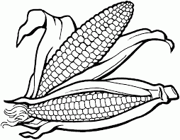 Large Size Of Coloring Pagescoloring Page Corn Pages Printable