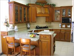 Home Depot Prefab Cabinets by Replacement Kitchen Cabinet Doors Home Depot Design Ideas Glass