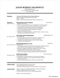 Sample Resume Word Document Template Templates For Resumes S Creative Medium Size