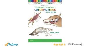 Veterinary Anatomy Coloring Book 2e 9781455776849 Medicine Health Science Books Amazon