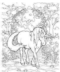 Pegasus Coloring Pages Unicorn And Page Galaxy