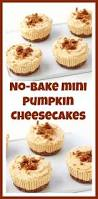 Pumpkin Marble Cheesecake Chocolate by Fall Pumpkin Desserts Pumpkin Tart U0026 No Bake Pumpkin Cheesecakes