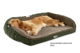 Stylish Dog Memory Foam Beds M50 For Your Designing Home