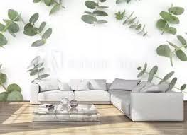 51 232 eukalyptus baum fototapeten leinwandbilder und