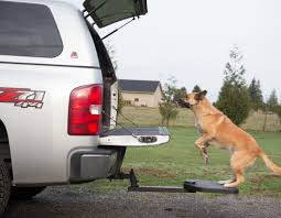 Pet Step For Pick-Up Truck | Best Dog Ramp For Pickup Truck | Pet ... Folding Alinum Dog Ramps Youtube How To Build A Dog Ramp Dirt Roads And Dogs Discount Lucky 6 Ft Telescoping Ramp Rakutencom Load Your Onto Trump With For Truck N Treats Using Dogsup Pet Step For Pickup Best Pickup Allinone Pet Steps And Nearly New In Box Horfield Land Rover Accsories Dogs Uk Car Lease Pcp Pch Deals Steps Fniture The Home Depot New Bravasdogs Blog Car Release Date 2019 20