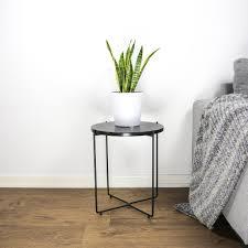 luftreinigende zimmerpflanzen wohlfühl zuhause pilea