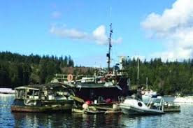 Tug Boat Sinks by Old Tugboat Sinks In Porpoise Bay The Local Weekly