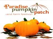 Pumpkin Patch Lafayette Al by Weekend Scares At Alabama U0027s Haunted Attractions