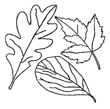 thanksgiving leaf coloring pages drawing of fall page