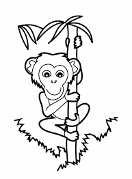 Gallery Of Coloring Page Wecoloringpage Proboscis Free Printable Pages Monkey Picture Dot To