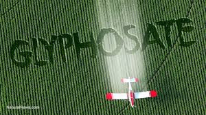 Monsanto Patented Glyphosate As An Antibiotic Drug Claiming Weed Killer Is Medicine