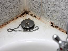 einfache anleitung schwarze fugen im bad ganz einfach loswerden