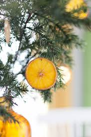 Citrus Ornaments Are So Easy To Make
