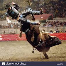 100 John De Oliveira Valdiron De Is Thrown Off His Bull During Professional Bull