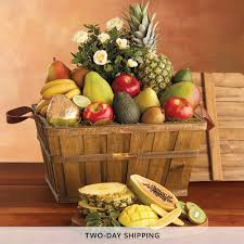 David Fruit Basket / Saga Hair Website Cherry Moon Farms Coupon Code Discount Coupon Codes Young Harry And David October 2018 Knight Coupons 2019 Coupons French Mountain Commons Log Jam Outlet Centers Edealsetccom Codes Promo Discounts Stein Mart Goodshop Exclusive Deals Discounts Flowers Promos Wethriftcom Davids Bridal December Dictionary What Is Management Customerthink Pears Harry Equate Brands