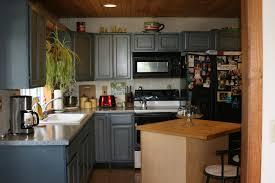 Quaker Maid Kitchen Cabinets Leesport Pa quaker maid cabinets nrtradiant com