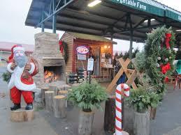 Christmas Tree Types by Minneapolis Christmas Trees At Farmer U0027s Market Annex Bj