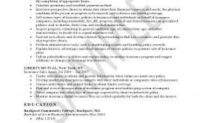 Resume Objective Examples For Insurance Underwriter Elegant Ultimate With Additional Health
