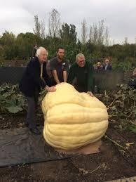 Largest Pumpkin Ever Grown 2015 by Gourd Almighty Grower Hopes Giant Pumpkin Will Break Record