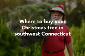 Stew Leonard Danbury Ct Christmas Trees by National Christmas Tree Shortage Is No Problem For Connecticut