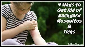 4 Ways To Get Rid Of Backyard Mosquitos And Ticks - Tech Savvy Mama How To Kill Fleas And Ticks All Naturally Youtube Keep Away From Your Pet Fixcom Get Rid Of Get Amazoncom Dr Greenpet Natural Flea Tick Prevention Tkicide The Art Getting Ticks In Lawns Teresting Rid Bugs Back Yard Ways Avoid Or Deer Best 25 Mosquito Control Ideas On Pinterest Homemade Mosquito Dogs Fast Way Mole Crickets Treatment Control Guide