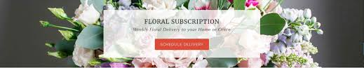 Flower Store In Milton ON - Same Day Delivery - Karen's ... 20 Off Eco Tan Coupons Promo Discount Codes Wethriftcom About Smith Floral Greenhouses Reviews Hours Delivery Flower Delivery Services In Melbourne Maddocks Farm Organics Buy Edible Flowers Online Poppy Botanical Chart Wall Haing Print With Wood Poster Hangers Pull Down Reproduction Solid Brass Hdware Ecofriendly Art Cratejoy Coupons Best Subscription Box Coupon Codes Apple Student 2019 Airpods Flirt4free Coupon Gaia Plants And Gifts Dtown Las Vegas 6 Last Minute Sites For Mothers Day With Redbus Offers Upto 550 Off Bus Promo Code Sep Shop Petal By Pedal Rosa Cadaqus Your Dried Flower Shop Europe