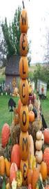 Eastern Iowa Pumpkin Patches by Pumpkin Patch In Spencer Iowa Hawk Valley Garden Pumpkin And