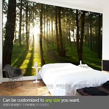 wall murals for living room home design