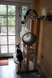 best 25 cat towers ideas on pinterest cat condo diy cat tree