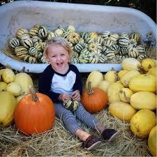 Shawns Pumpkin Patch Hours by Brookshire Farms 62 Photos U0026 46 Reviews Pumpkin Patches 4747