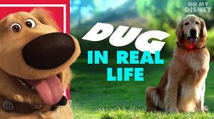 Donna Decorates Dallas Full Episodes by Go Com The Walt Disney Company
