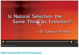 Is Natural Selection the Same Thing as Evolution Assessing Dr