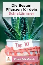 die besten 10 pflanzen für dein schlafzimmer schlafzimmer