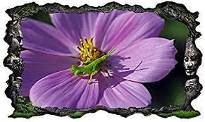 3d wandtattoo grille grün lila blume grashüpfer bild