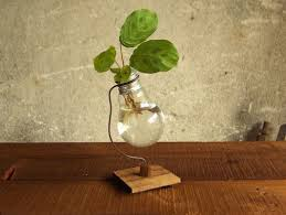 light bulbs get recycled into adorable vases livbit