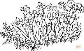 Click The Flowers In Garden Coloring Pages
