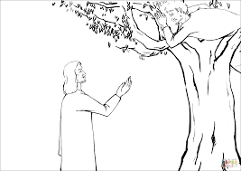 Click The Jesus Asked Zacchaeus To Come Down Coloring Pages View Printable Version Or Color It Online Compatible With IPad And Android Tablets