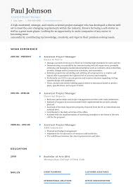 100 Assistant Project Manager Resume Samples Templates VisualCV