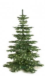 Lifelike Artificial Christmas Trees Uk by Artificial Christmas Trees Online By Xmasdeco Com