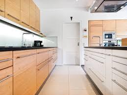moderne zweizeilige küche skandinavisch küche sonstige