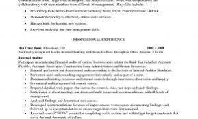 Related Posts For Resume Summary Examples Auditor Unique Accountant Sample Lovely Entry Level