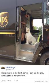 UPS Drivers Capture The Most Interesting Photos On Their Routes, And ...