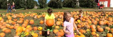 Michigan Pumpkin Patch Apple Orchard by 7 Things To Do With Kids This Fall In Grand Rapids Mi