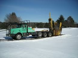 Types Of Trees & Photos - Greeno Tree Spade Services, LLC Baumalight Nomad Tree Spades 100 For Chase Farms Youtube Cqm Series Pick Up Truck Mounted Hydraulic Trsplantertree Trees By Brady Bennett Winchester Wi Spade And Truckingdepot Premier Equipment Rentals Skidsteer Four More Favorite Northern Virginia Shade Surrounds 60 Bobcat 1991 Gmc Sierra 3500 Pickup Truck With Tree Spade Item Dc0