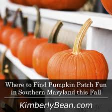 Best Pumpkin Farms In Maryland by 268 Best Things To Do In Southern Maryland Images On Pinterest