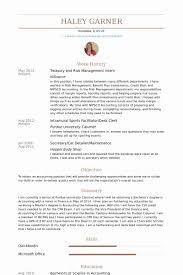 Treasury Resume Sample Fresh Management Intern Samples Visualcv Database