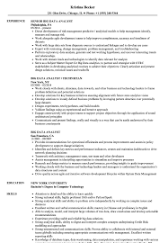 Big Data Analyst Resume Samples | Velvet Jobs Entry Level Data Analyst Cover Letter Professional Stastical Resume 2019 Guide Examples Novorsum Financial Admirably 29 Last Eyegrabbing Rumes Samples Livecareer 18 Impressive Business Sample Quality Best Valid Awesome Scientist Doc New 46 Fresh Scientist Resume Include Everything About Your Education Skill Big Velvet Jobs