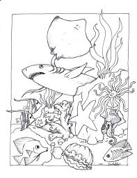 Full Image For Ocean Animal Coloring Pages Toddlers Animals Pdf Realistic Sea