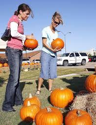 Oklahoma Pumpkin Patches pumpkin patches are plentiful in edmond news ok