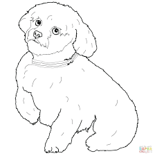 Christmas Dog Coloring Pages Free Short Hair Page House Printable Full Size